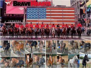 BraveHearts Blog